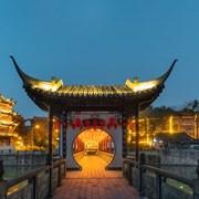 中国新年中的成都百花潭公园夜景