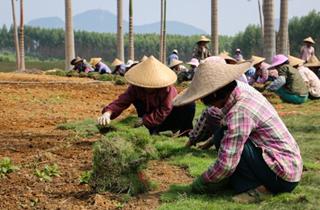 四川省旅游发展委员会启动第二轮旅游 规划扶贫公益行动