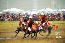 千人锅庄、万马奔腾,四川第九届乡村文化旅游节分会场暨草坝赛马活动在理塘举行