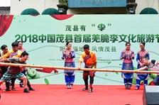 """茂县有""""李"""" ,2018中国茂县首届羌脆李文化旅游节推介会在成都举行"""