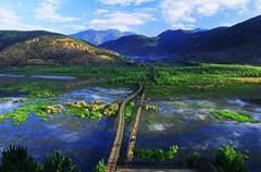 草海,指长满草的高原湖泊。泸沽湖有四个大小不等的草海,主要分布在北面和东北面,川滇各有两个。