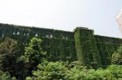 中国建筑西南设计研究院有限公司旧办公楼位于金牛区星辉西路8号院内,建于1957年,建筑面积7091平方米,是成都著名建筑大师徐尚志的代表作品之一,不仅遵循了新中国成立初期的建筑理念,同时也实践了徐尚志先生的建筑理想,建成后获得了全国各地的高度评价和争相模仿,在新中国建筑史上占据了一席之地。