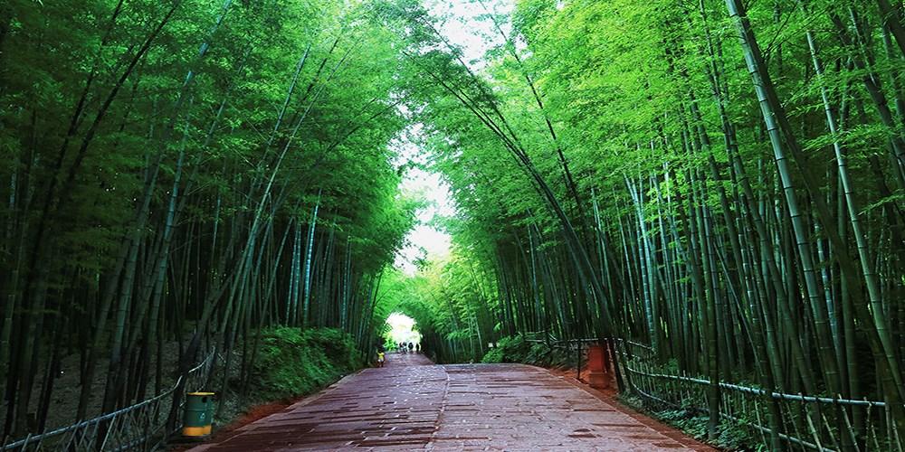 中国竹都—大美长宁邀您一起过春节