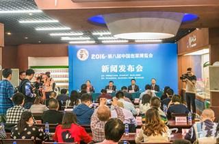 第八届中国泡菜博览会 10月31日~11月4日在四川眉山举行