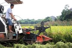 """泸州市纳溪区抓住精准扶贫的契机,""""打捆""""涉农项目,改善山区农村的基础设施和农田水利,方便机械化耕种,改变传统农耕模式。""""双抢""""季节,通过农机部门向河南、湖北、贵州等各地""""农机合作社""""、""""机械收割团队""""发布信息。"""