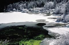 地处横断山地区北段的四川甘孜藏族自治州有许多高山湖泊,这些湖泊大多分布在断裂带上,尤其分布在断裂构造的交汇地带,所以较大的湖泊均受地质构造因素的控制和影响,形成了一些冰川湖、断陷湖、堰塞湖等。人们给这些美丽的湖泊赋予了一个诗意般的名字:海子。