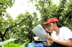 """进入暑期,各大学的部分研究生、大学生利用暑期""""三下乡""""社会实践活动,充分发挥自身的专业特长,把科技知识送进农村的田园、菜地、果林、养殖场,在服务农村基层的同时,提高自己发现问题、分析问题、解决问题的能力。"""
