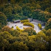 成都人民公园秋景