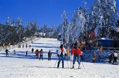 地处我国西南的四川峨眉山、西岭雪山、毕棚沟等地,冬日里不仅有着雄奇的冰雪美景,更建有供人们体验滑雪、溜冰等冰雪娱乐的滑雪场。这些滑雪场雪质优良,坡度平缓,是绝佳的滑雪胜地。